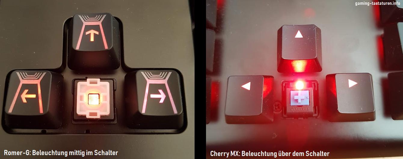 Vergleich der Beleuchtung der Romger-G Tactile Schalter und Cherry MX Blue Switches